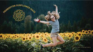 SunflowerMaze