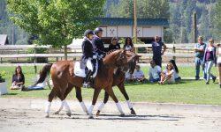 DreamcatcherMeadows_HorseShow